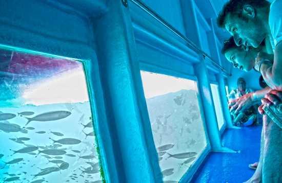 Meeresabenteuer von Fuerteventura nach Lanzarote
